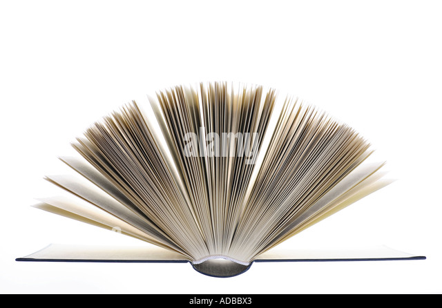 Pages of an open book. Stock Foto