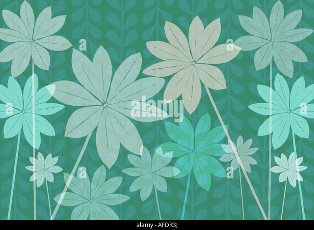 Illustration of lupin foliage Stock Foto