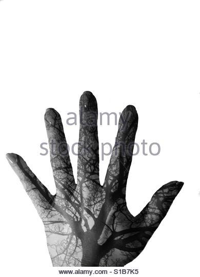 Hand/tree double exposure Stock Foto
